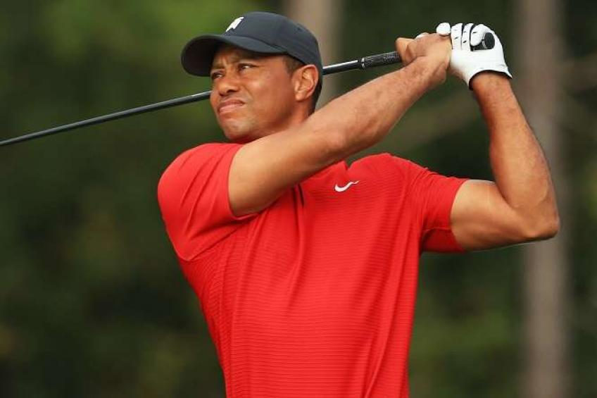 Tiger Woods could be at this year's Ryder Cup