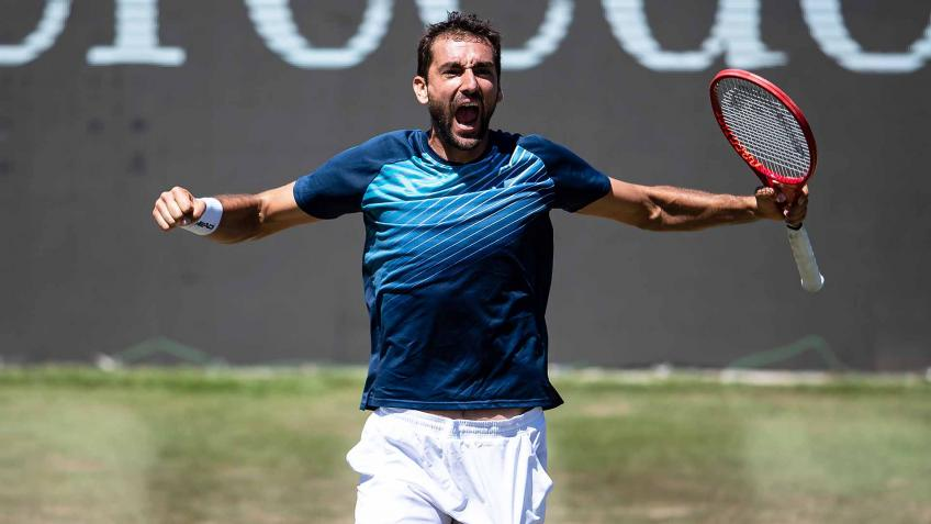 Marin Cilic hopes to make Tennis Corridor of Fame: I managed to win US Open in Massive 3 Period