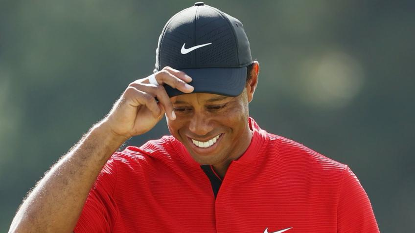 Tiger Woods, 800 million dollars without golf