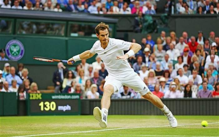 Image result for wimbledon andy murray