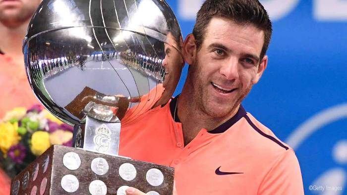 Del Potro: 'I didn't expect to win the title, I know I can be dangerous'