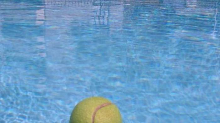 As soon as the players coming out of the pool, he pitched a couple of tennis balls in the water. The result is amazing.