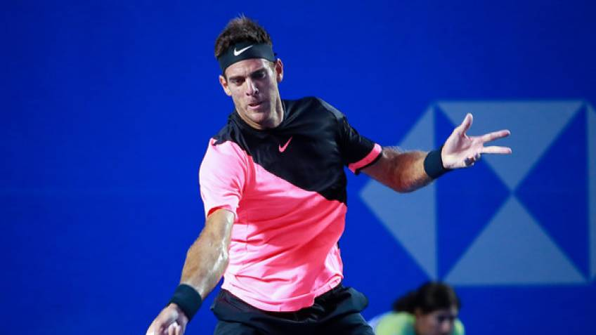 Del Potro sees off Andersron for title