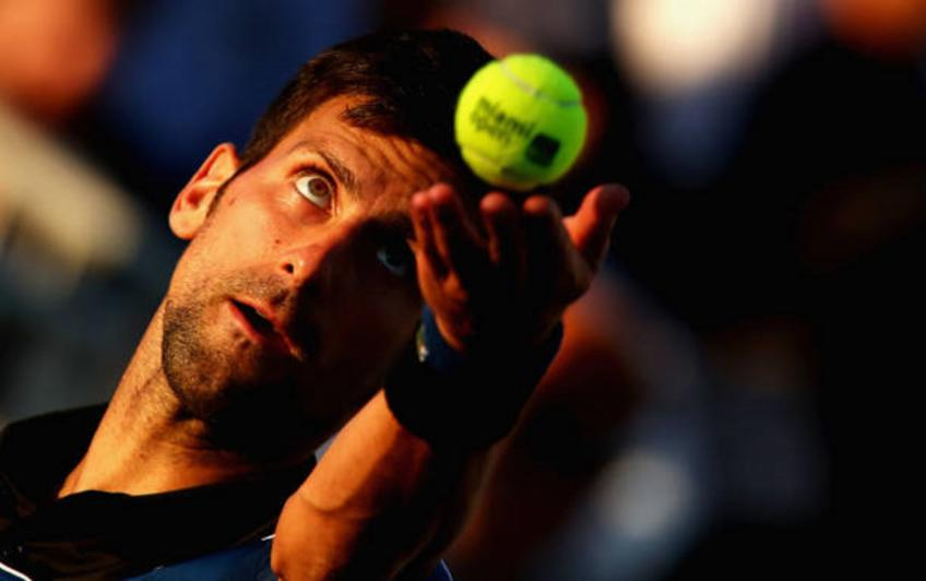 Canada's Peter Polansky advances at Rogers Cup