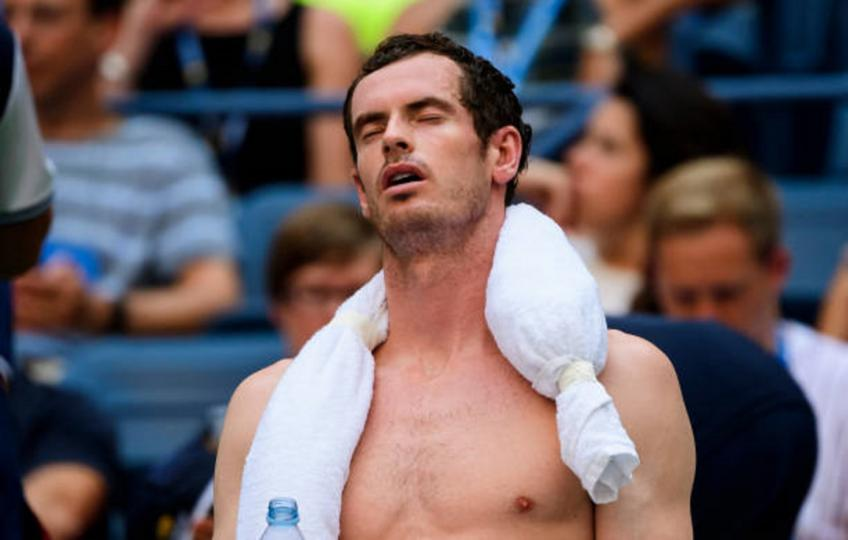Andy Murray blames Fernando Verdasco for coaching