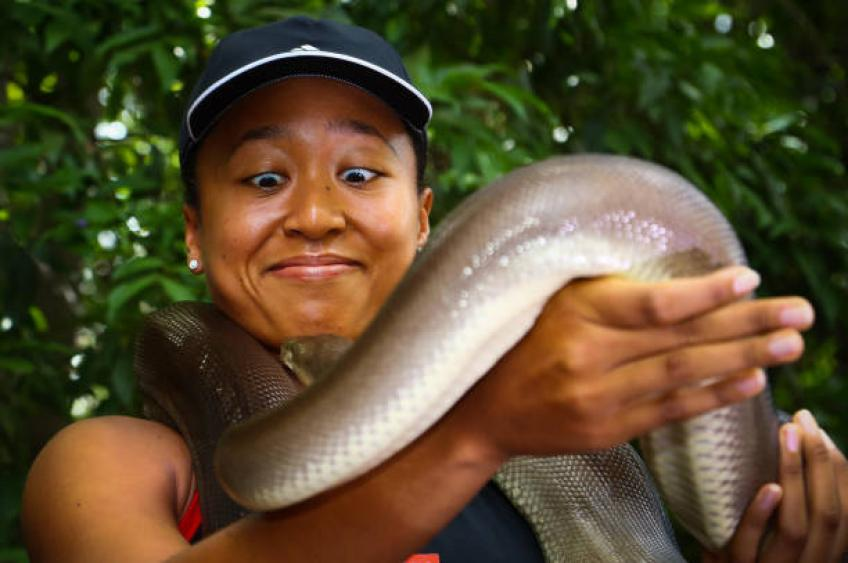 Naomi Osaka holds an olive python: I have always wanted to do these things