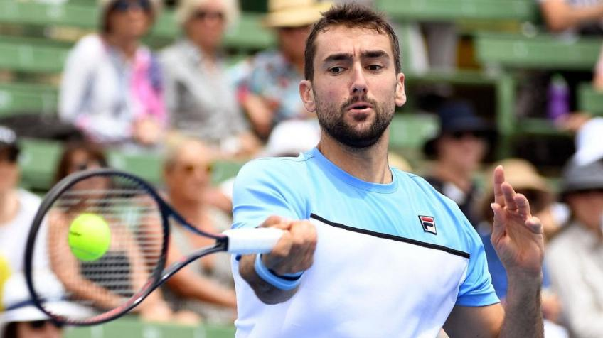 The technical, tactical and physical involution of Marin Cilic