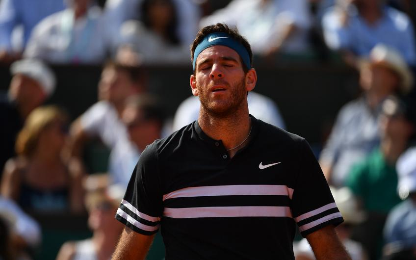 Fractured kneecap puts Juan Martin del Potro's career in doubt