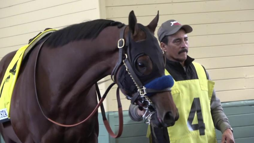 Colt Named After Rafael Nadal is a leading contender on the Kentucky Derby trail