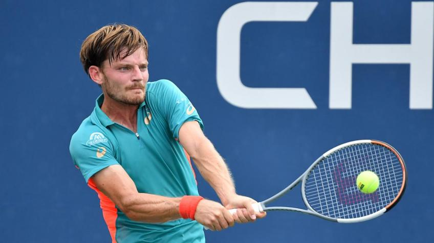 David Goffin: Carlos Alcaraz just killed me