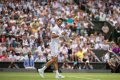 "Novak Djokovic enters Wimbledon ""Club 70"" with Federer, Connors and Becker"