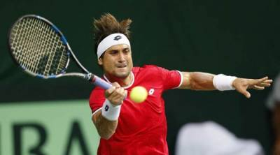 David Ferrer: The Subtle Enforcer