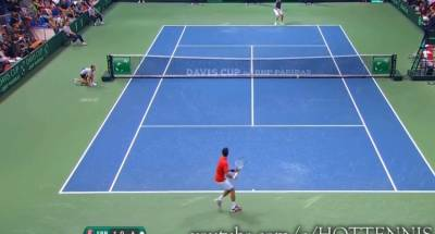 Amazing defense by Djokovic, who wins the point at the net