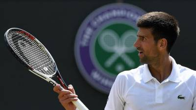 Damir Dzumhur dreams of defeating Novak Djokovic