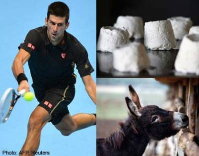 Djokovic speaks out on donkey cheese story