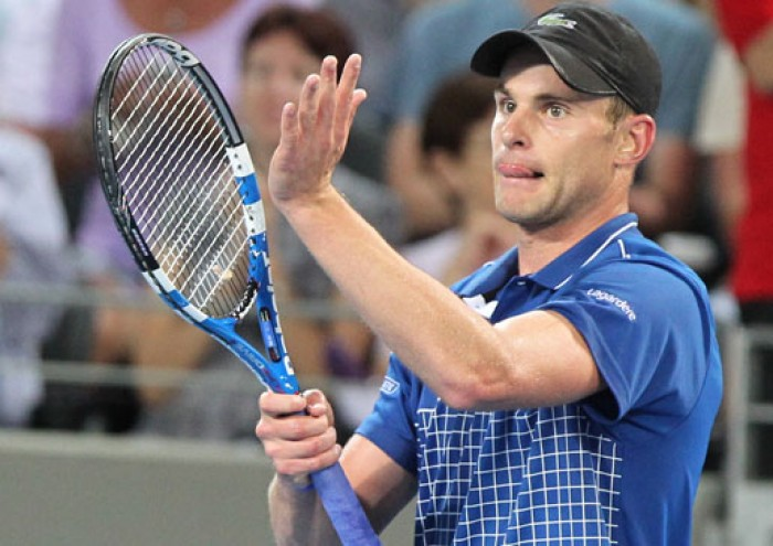 Andy Roddick returns to Davis Cup for USA